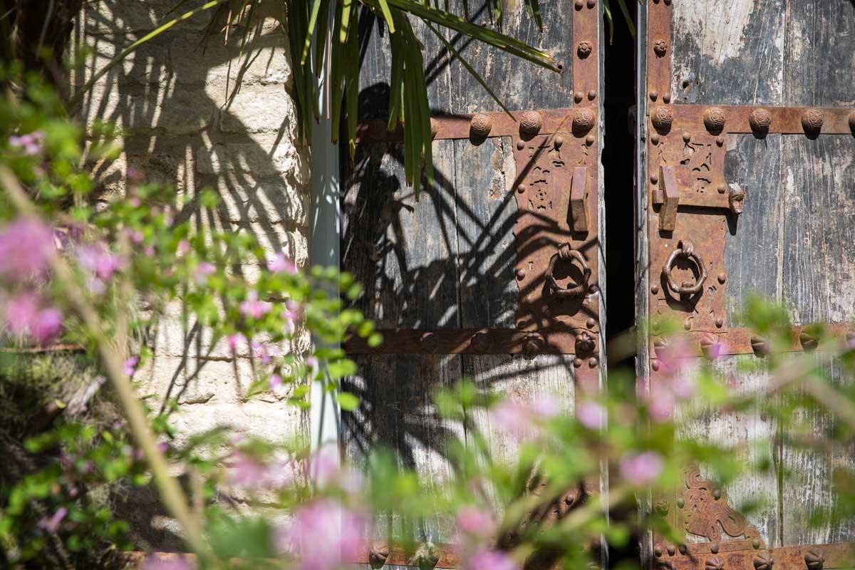 quirky-garden-Matara