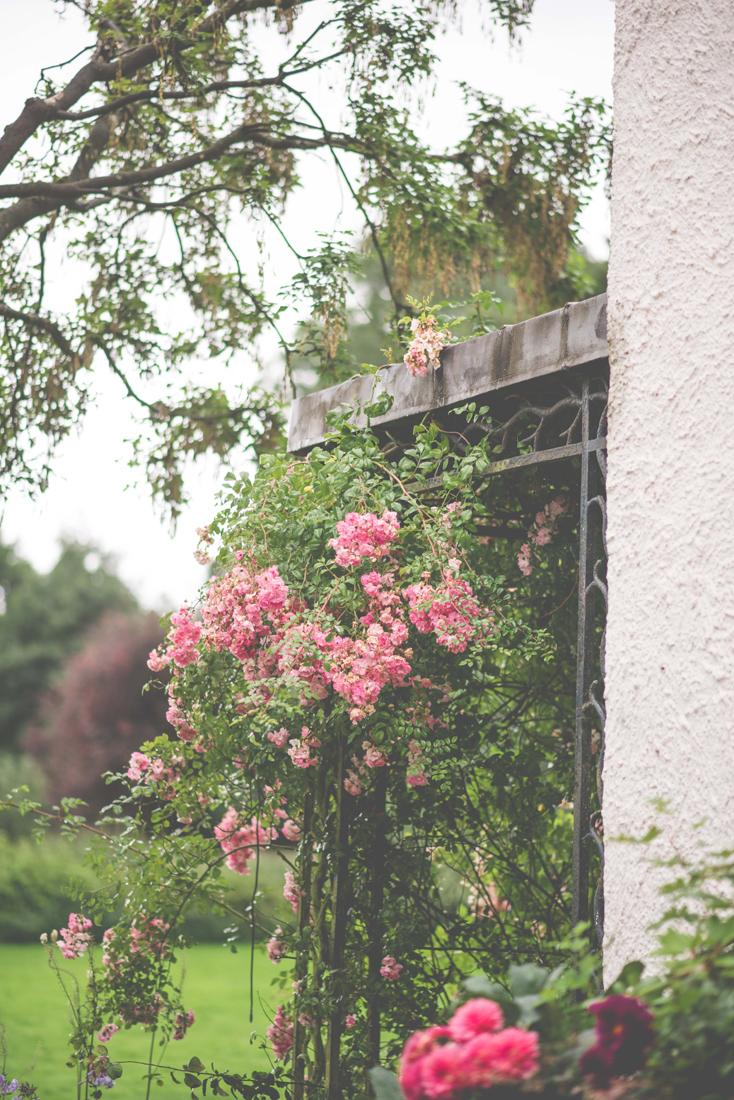 rose-arbour-Matara