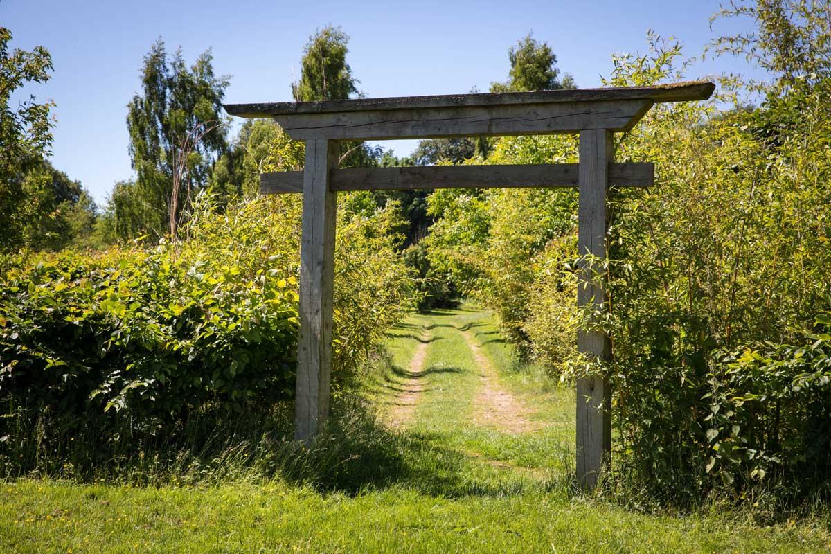 Gardens-Matara-Gloucestershire
