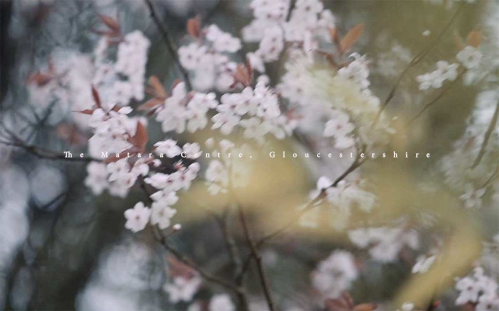 Videography-Tylor-Made-Matara