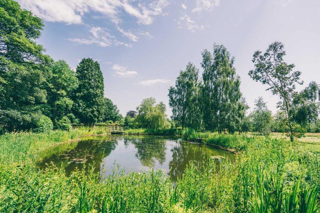 Ponds-Lakes-Habitat-Matara